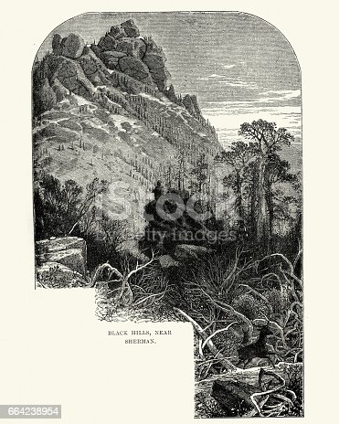 Vintage engraving of a view of the Black Hills, near Sherman, 19th Century