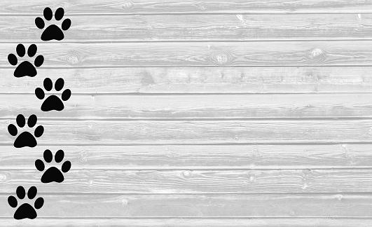 Black paw prints on white wooden background.
