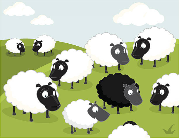 Black sheep of the family  flock of sheep stock illustrations