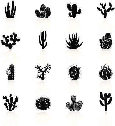 Black Symbols - Cactuses Cacti