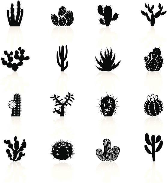 stockillustraties, clipart, cartoons en iconen met black symbols - cactuses cacti - cactus