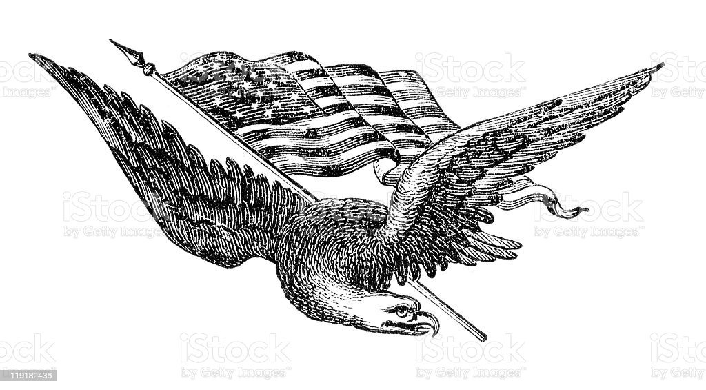 Black vector illustration of flying eagle with the USA flag royalty-free stock vector art