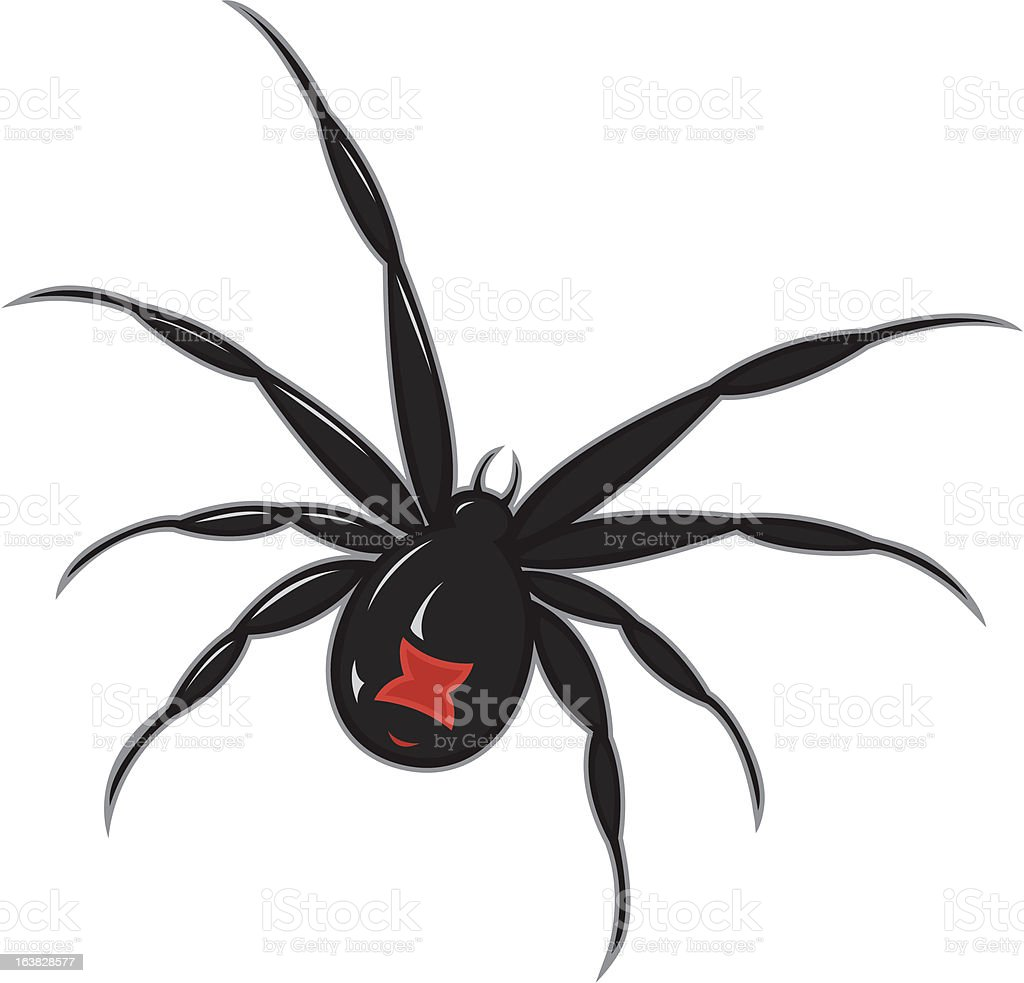 Black Widow Spider Stock Vector Art & More Images of Animal ...