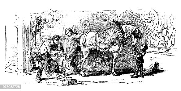 istock Blacksmith shoeing a mule 973082728