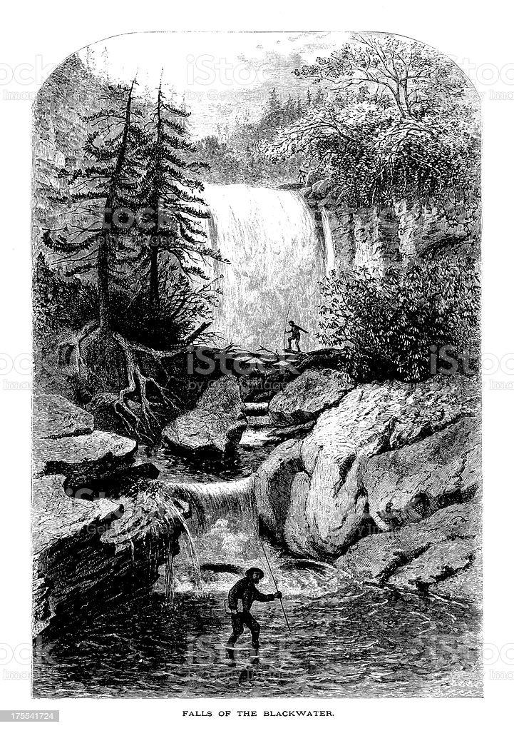 Blackwater Falls, West Virginia | Historic American Illustrations vector art illustration