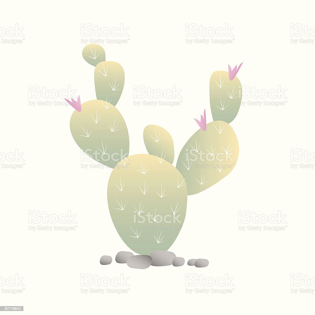Blooming Cactus royalty-free stock vector art
