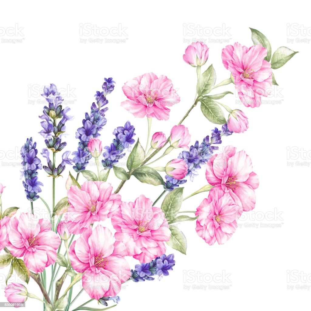 Blossom Flowers Bouquet Stock Vector Art & More Images of Art ...