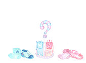 blue and pink elements foe a gender reveal party