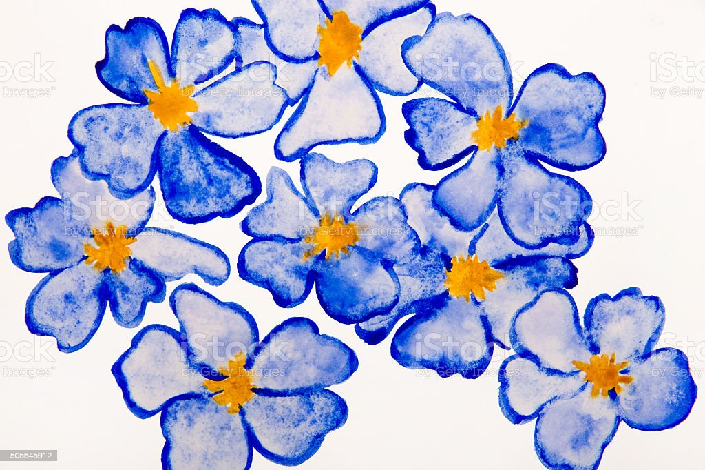 blue flowers water color vector art illustration