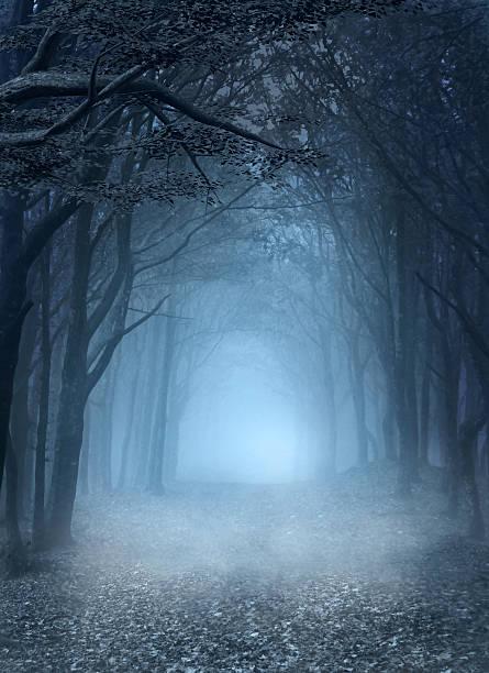 Bosque de niebla azul - ilustración de arte vectorial