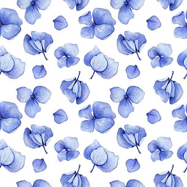 stockillustraties, clipart, cartoons en iconen met blue hydrangea seamless pattern - hortensia