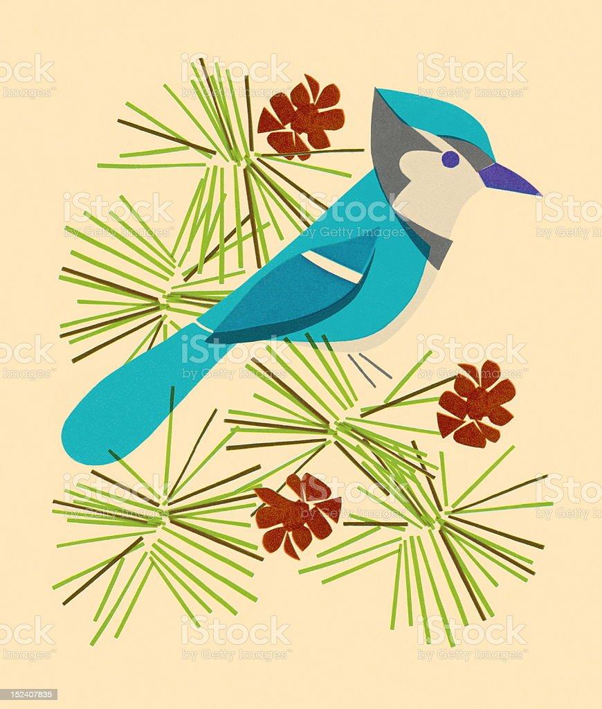 Blue Jay Sitting on Branch vector art illustration