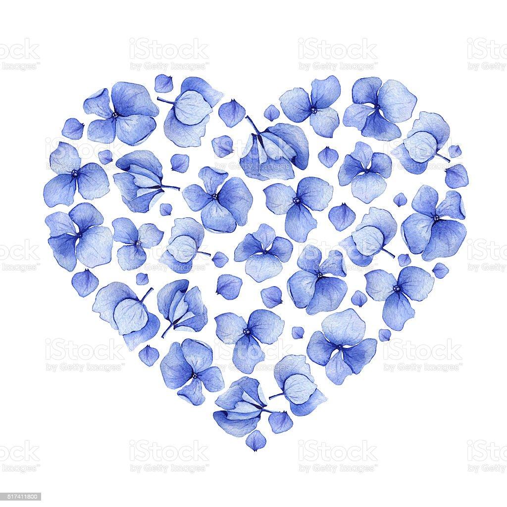 blue watercolor hydrangea floral heart design stock vector art