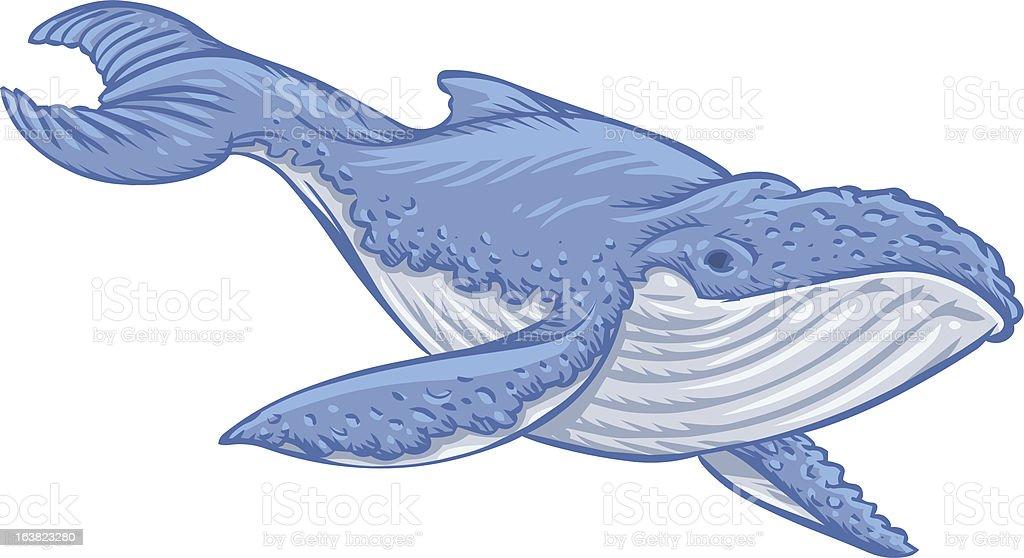 Ilustración de Ballena Azul y más banco de imágenes de Animal ...