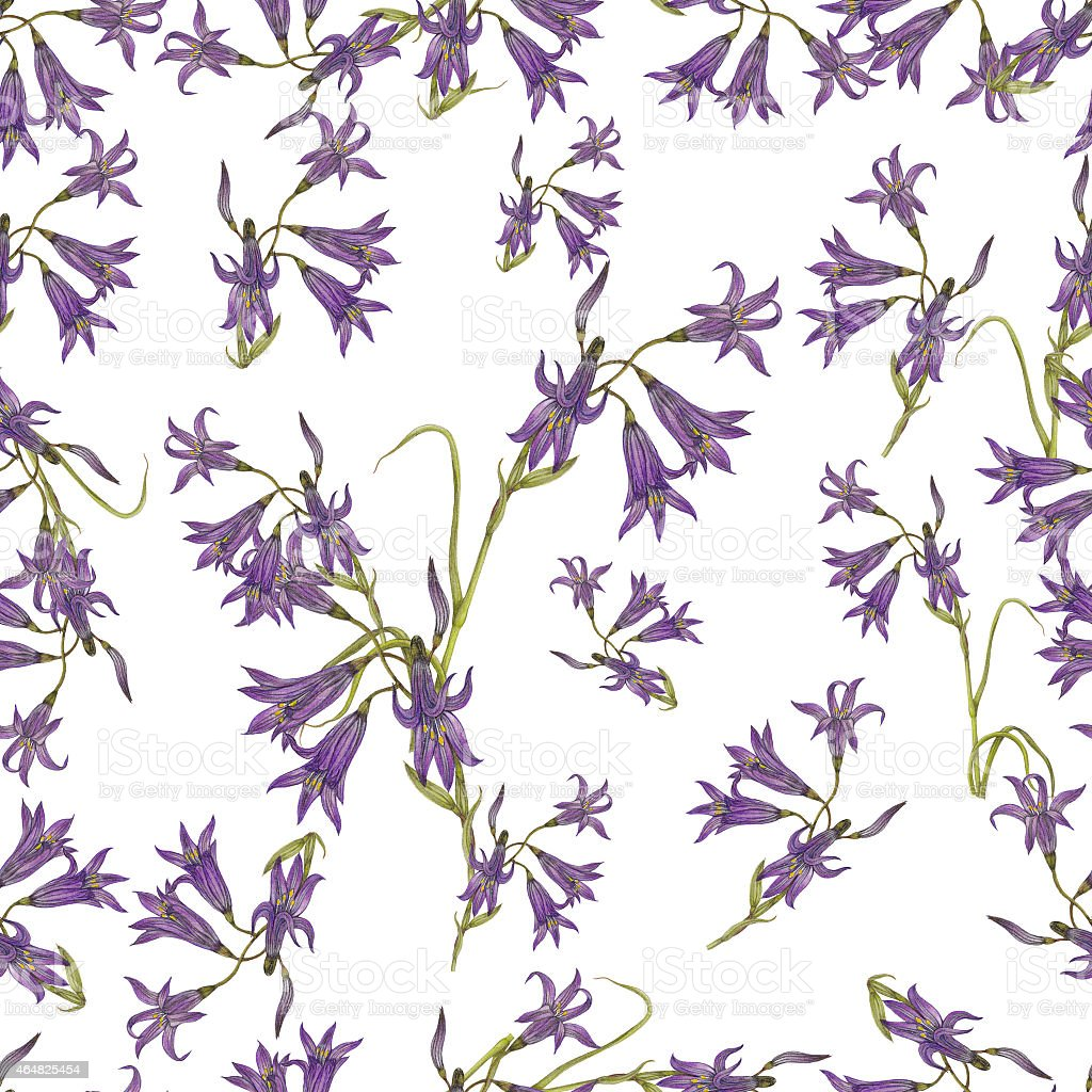 Bluebell pattern vector art illustration