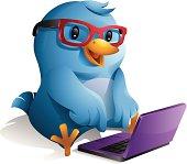 Bluebird: Blogger