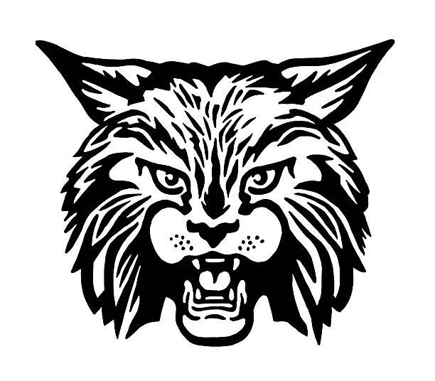 Bobcat Bobcat bobcat stock illustrations
