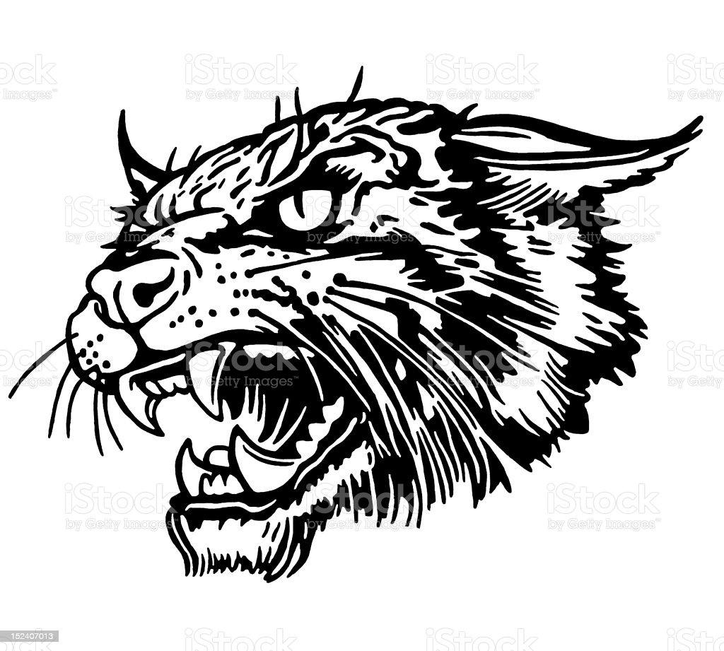 Bobcat royalty-free stock vector art