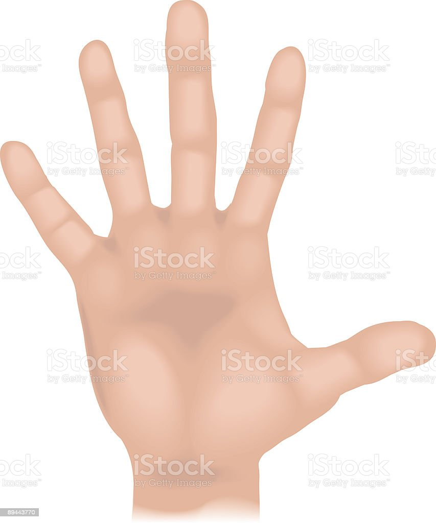 Body parts hand 免版稅 body parts hand 向量插圖及更多 一個人 圖片