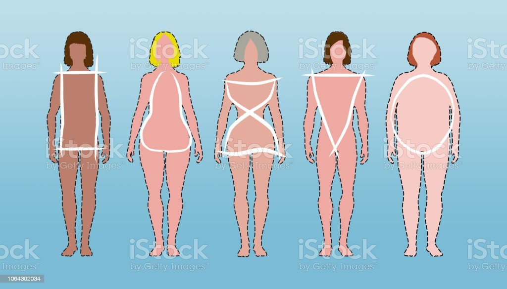 Body Types Rectangle Pear Hourglass Triangle And Apple Shaped White