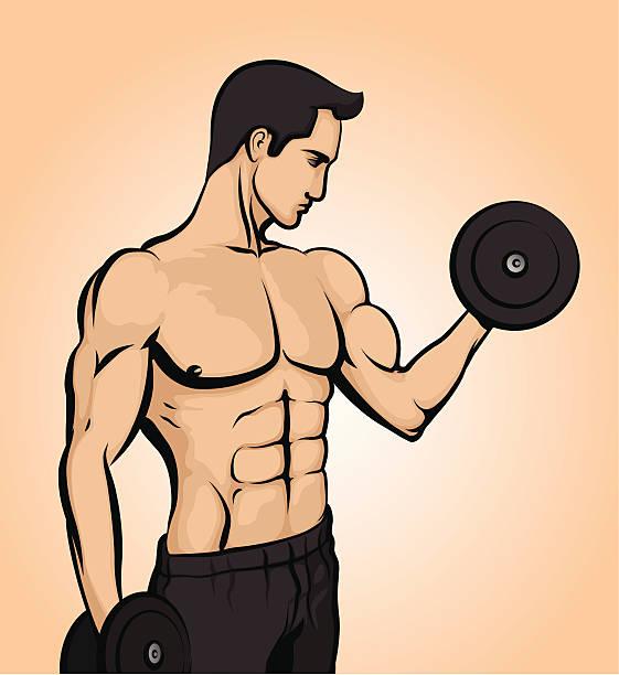 Bodybuilder lifting weights vector art illustration