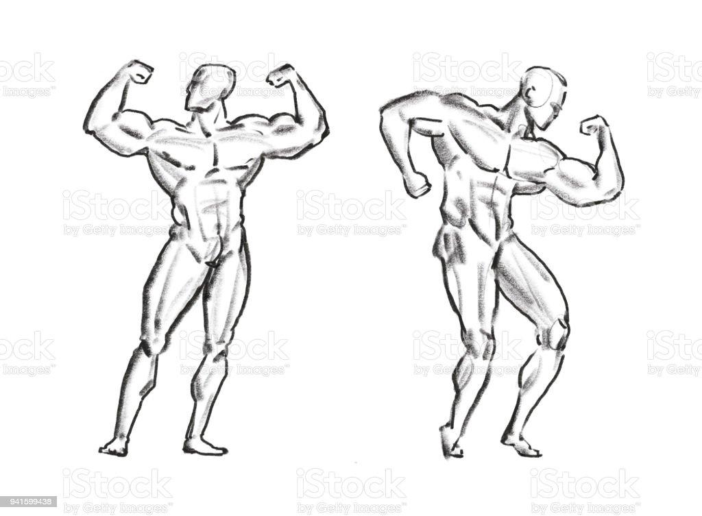 Bodybuilder Muskel Männlich Skizzieren Fitnessstudio Sportkonzept ...