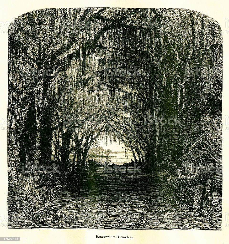 Bonaventure Cemetery, Georgia, USA vector art illustration