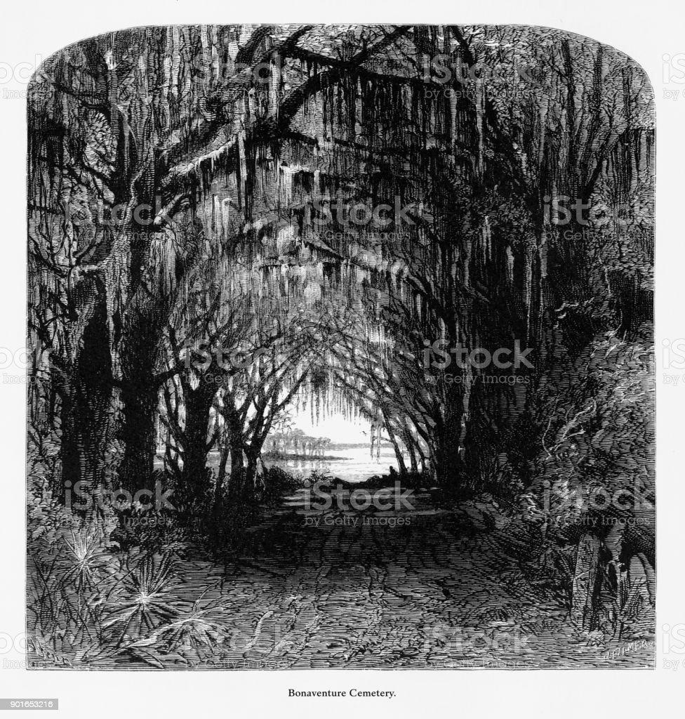 Cemitério de Bonaventure, Savannah, Georgia, Estados Unidos, gravura de Victorian americano, 187 - ilustração de arte em vetor