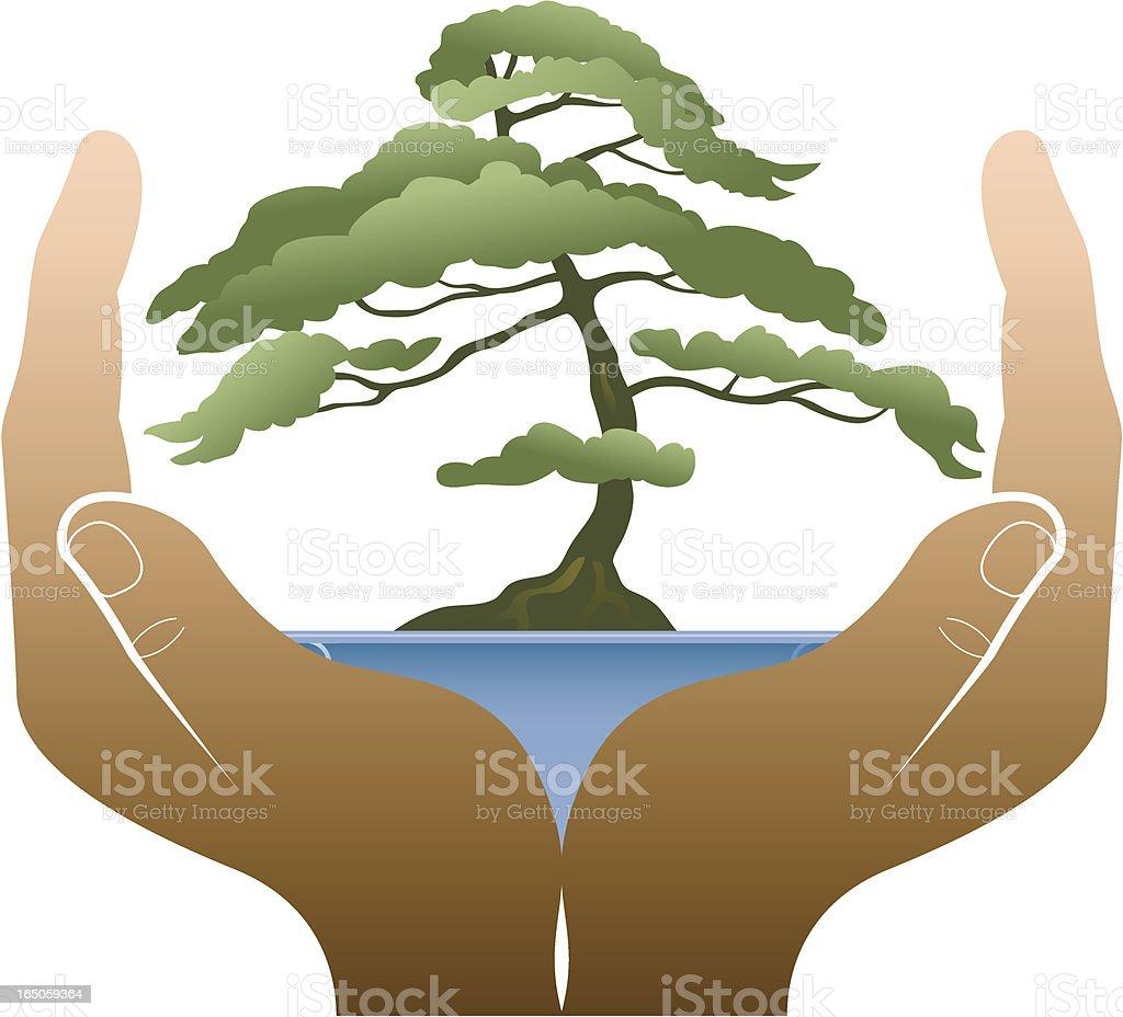 Bonsai hands vector art illustration