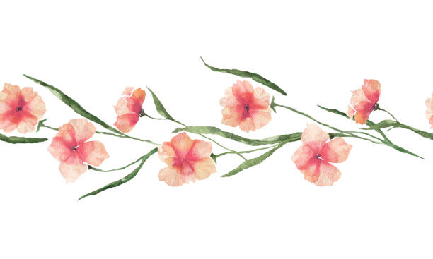 Border with watercolor orange flowers on a white background. vector art illustration