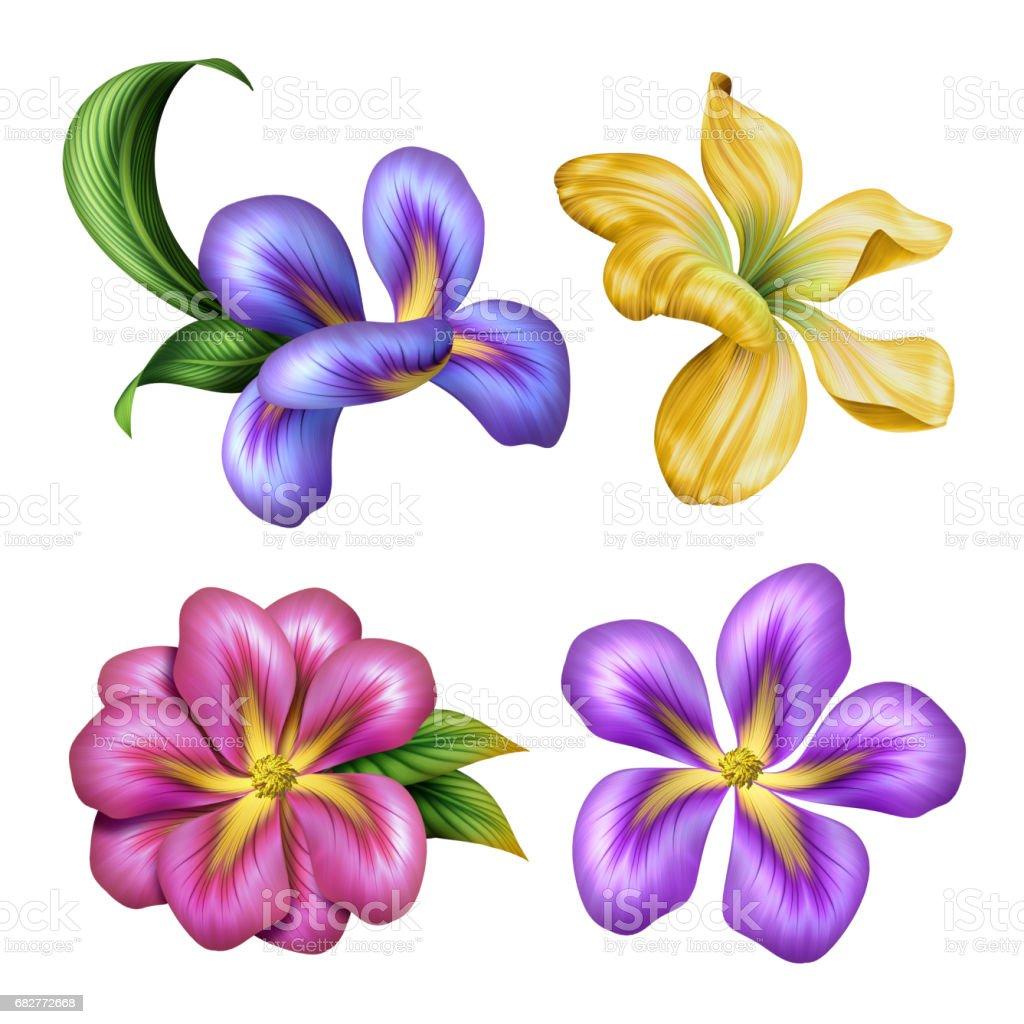 Botanical Illustration Beautiful Colorful Tropical Flowers Floral Clip Art Design Elements Set