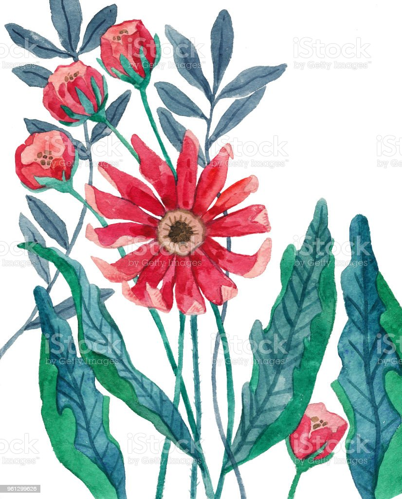 Botanical Illustration Watercolor Flowers Pink Flower And Mint Green ...