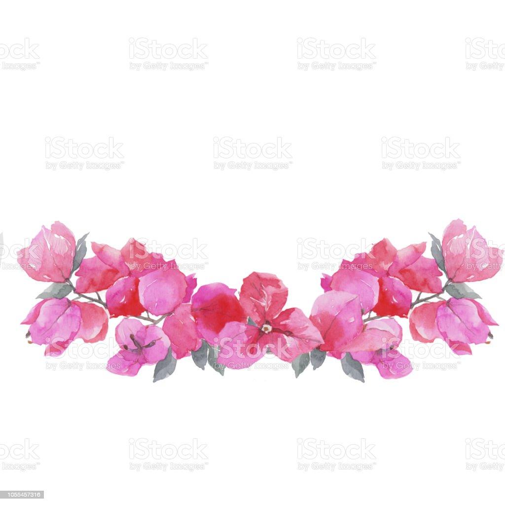 Bougainvillea çiçek. vektör sanat illüstrasyonu