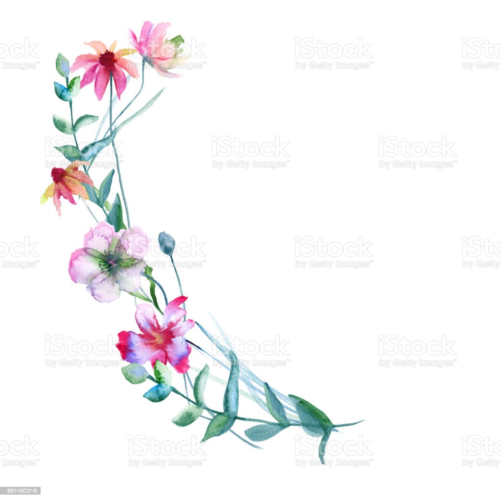 Bouquet of wildflowers. Isolated on white background. vector art illustration