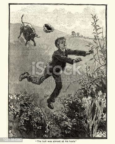 Vintage engraving of Victorian boy being chased through a field by an angry bull, 19th Century