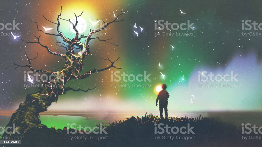 boy with the light ball looking at fantasy tree vector art illustration