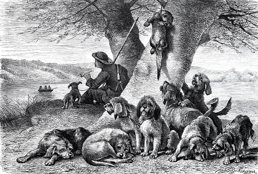 Break after the otter hunt, hunter and dogs resting at a tree