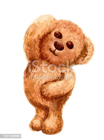 istock brown bear cute watercolor isolated on white, illustration bear doll water color, fluffy bear toy cute 1331509580