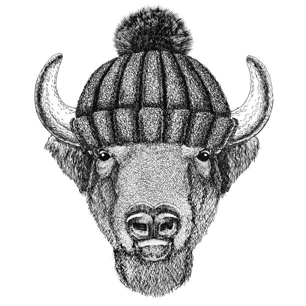e9bed20f6 Buffalo Bisonox Bull Wearing Winter Knitted Hat Stock Vector Art & More  Images of African Buffalo - iStock