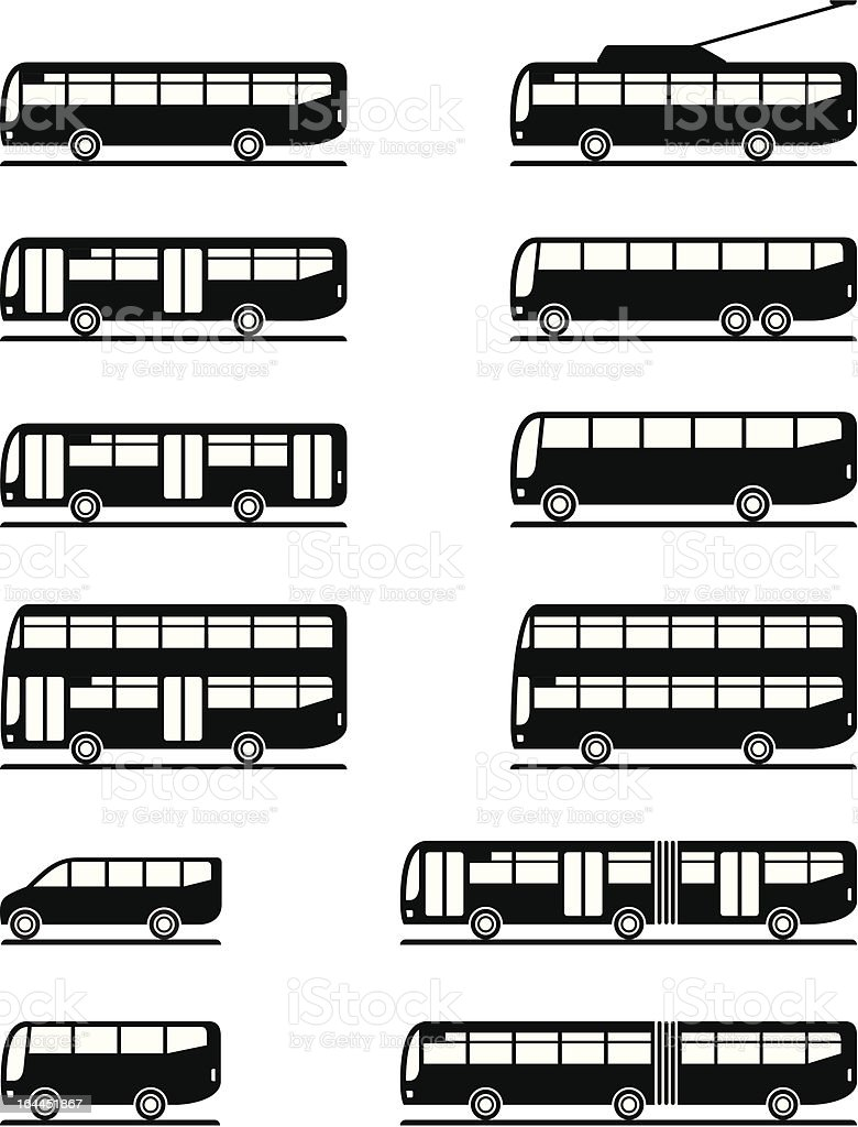 Buses and coaches vector art illustration