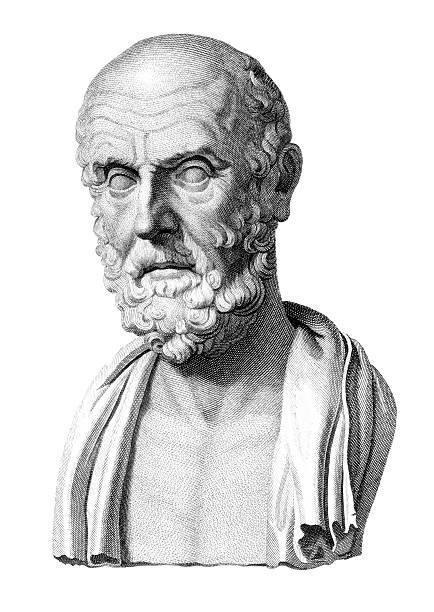 Bust of Hippocrates  one senior man only illustrations stock illustrations