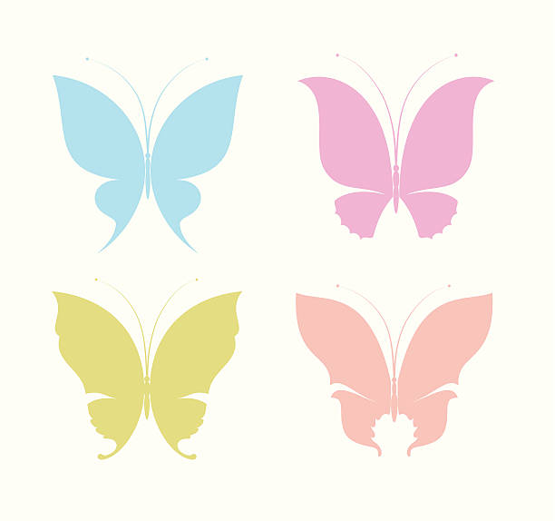 Butterflies vector art illustration