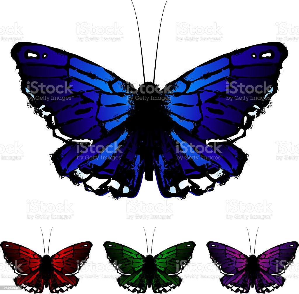 butterfly royalty-free butterfly stock vector art & more images of butterfly - insect