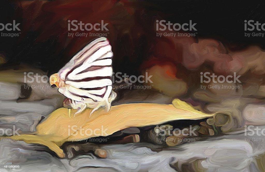 butterfly painting vector art illustration