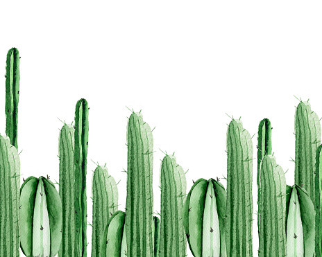 Cactus frame watercolor seamless pattern.