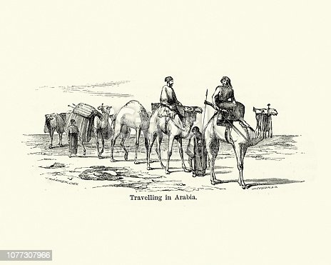Vintage engraving of a Camel train travelling through Arabia, 19th Century