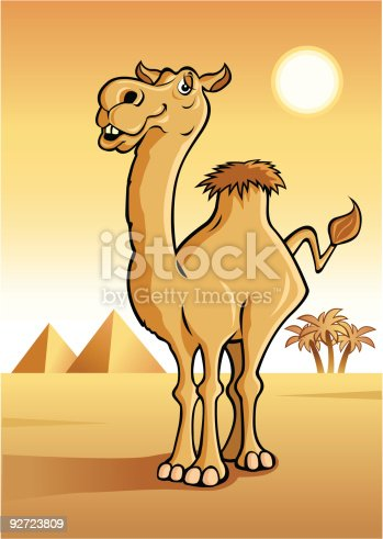 istock Camel with pyramids in the background 92723809