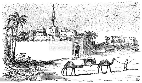 Two camels carrying a sedan chair at Cairo, Egypt. Vintage etching circa late 19th century.