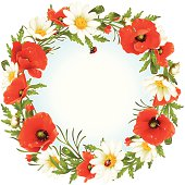 Camomile and poppy frame in the shape of circle