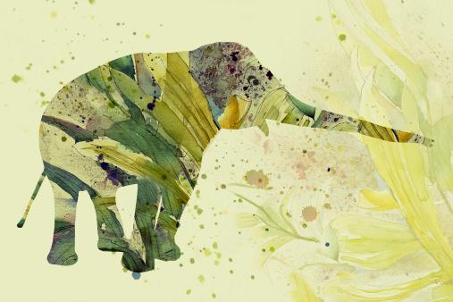 Camouflaged elephant